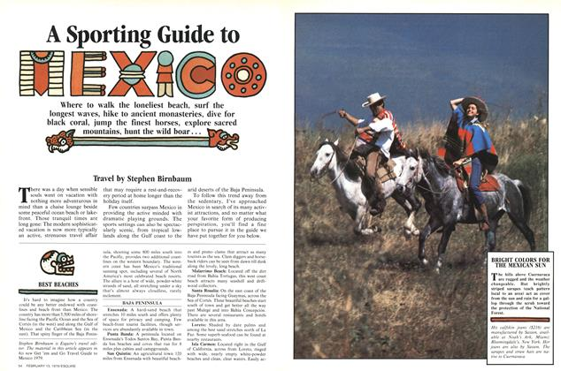 A Sporting Guide to Mexico