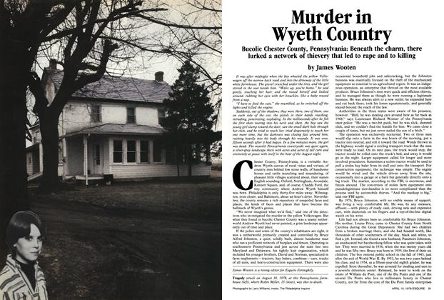 Murder in Wyeth Country