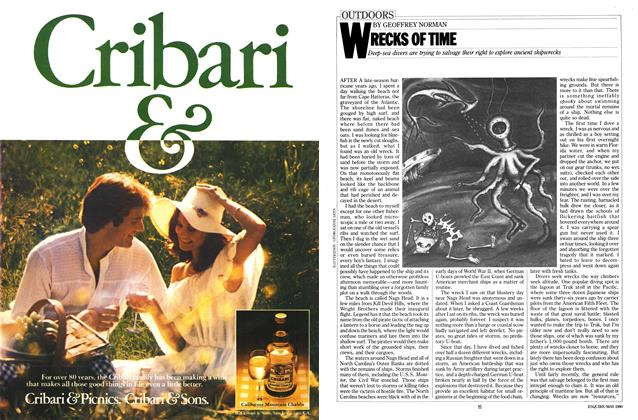 Article Preview: WRECKS OF TIME, MAY 1980 1980 | Esquire