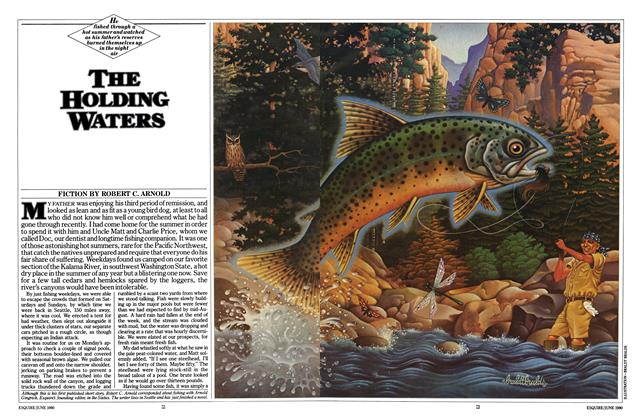 Article Preview: The Holding Waters, June 1980 | Esquire