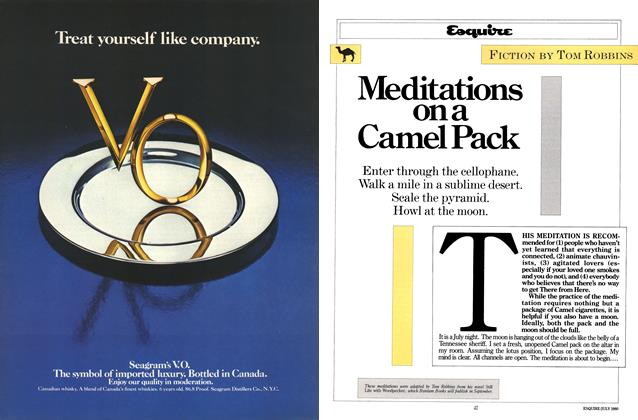 Article Preview: Meditations on a Camel Pack, July 1980 | Esquire
