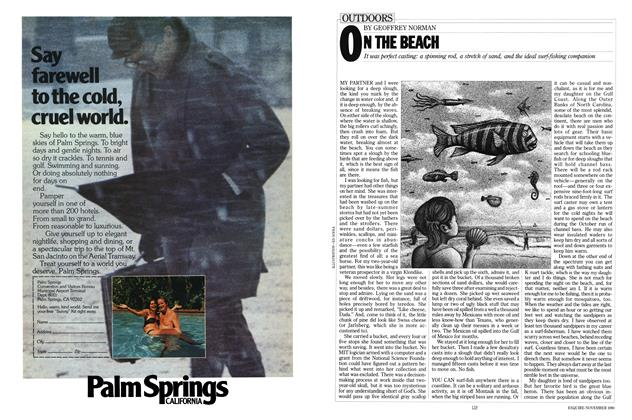 Article Preview: ON THE BEACH, NOVEMBER 1980 1980 | Esquire