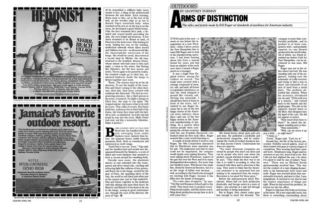 Article Preview: Arms of Distinction, April 1981 | Esquire