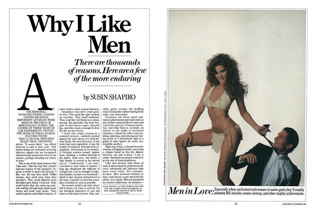 Why I Like Men