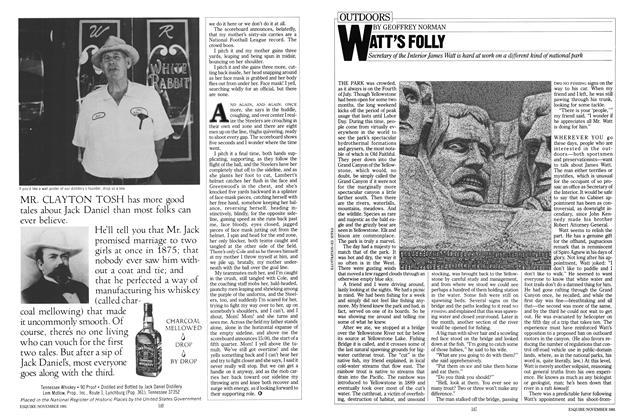 Article Preview: Watt's Folly, November 1981 | Esquire