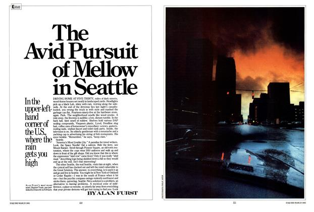 The Avid Pursuit of Mellow in Seattle
