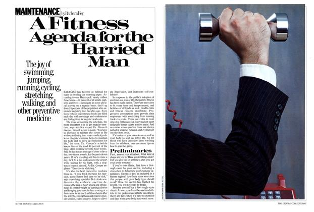 A Fitness Agenda for the Harried Man