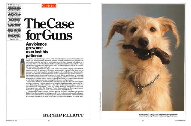 The Case for Guns