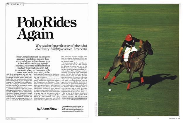 Polo Rides Again