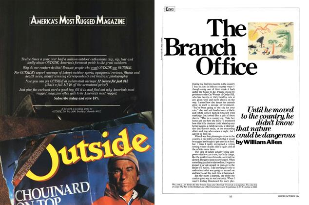 The Branch Office