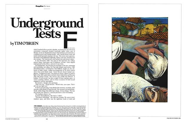 Article Preview: Underground Tests, November 1985   Esquire