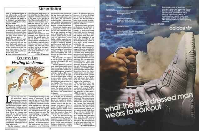 Article Preview: Feeding the Fauna, March 1986 | Esquire