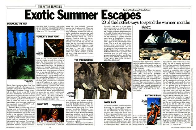 Exotic Summer Escapes