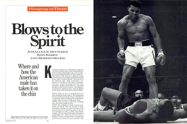 Article Preview: Blows to the Spirit, June 1986 | Esquire