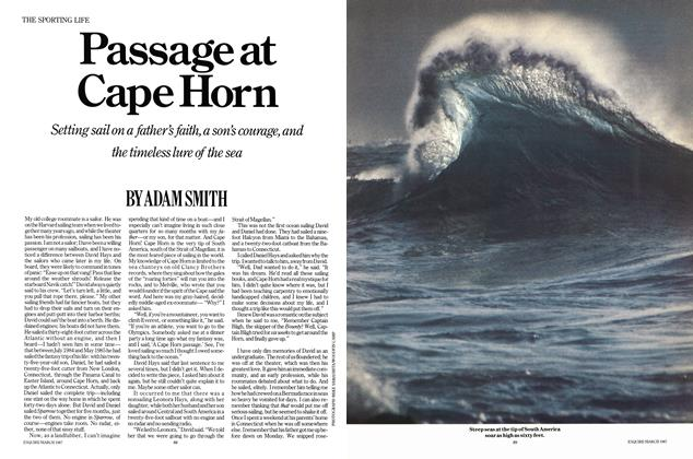 Article Preview: Passage at Cape Horn, MARCH 1987 1987 | Esquire