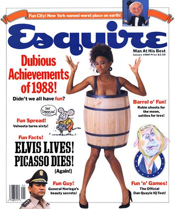 Cover for the January 1989 issue