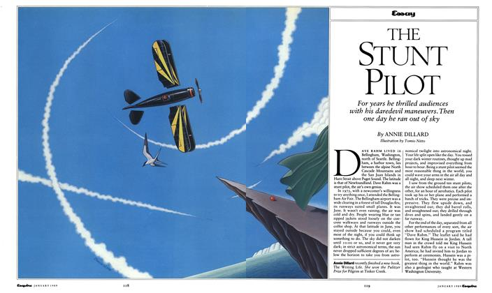 Article Preview: The Stunt Pilot, January 1989 1989 | Esquire
