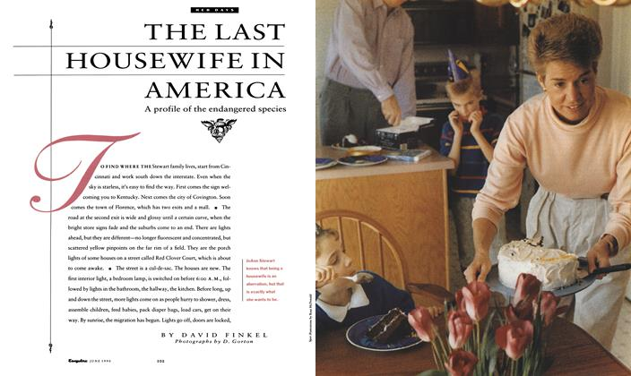 The Last Housewife in America
