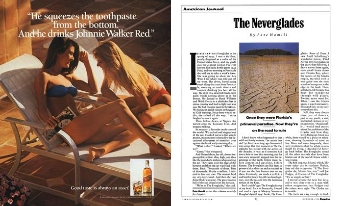 Article Preview: The Neverglades, October 1990 | Esquire