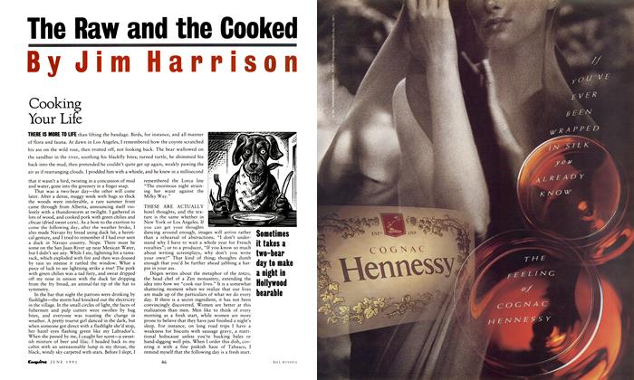Article Preview: Cooking Your Life, June 1991 | Esquire