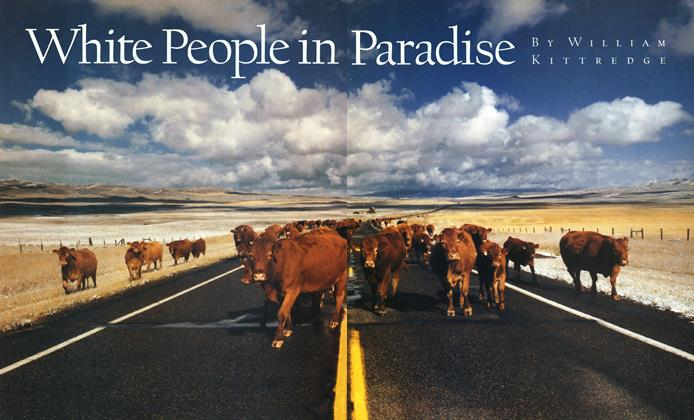 Article Preview: White People in Paradise, December 1991 | Esquire