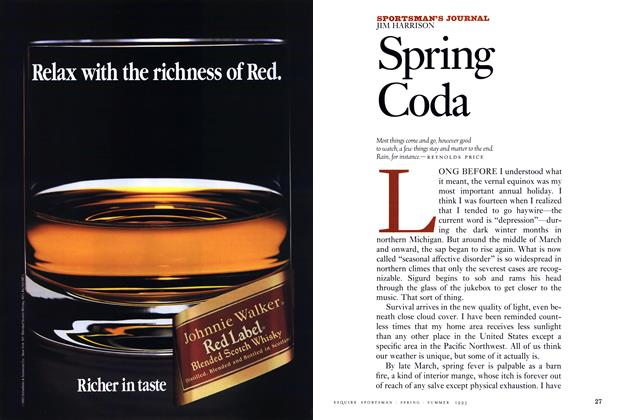 Article Preview: Spring Coda, Spring • Summer 1993 1993 | Esquire