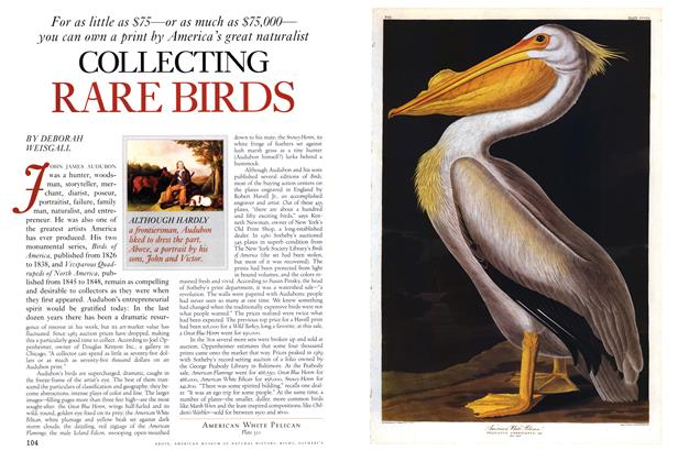 Article Preview: Collecting Rare Birds, Spring • Summer 1993 1993 | Esquire