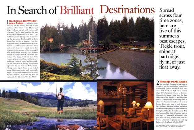 Article Preview: In Search of Brilliant Destinations, Spring • Summer 1993 1993   Esquire