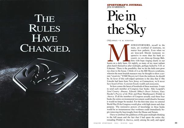 Article Preview: Pie in the Sky, FALL/WINTER 1993 1993 | Esquire