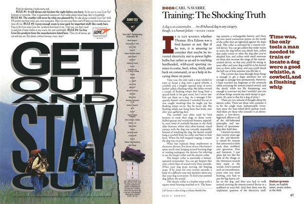 Training: the Shocking Truth