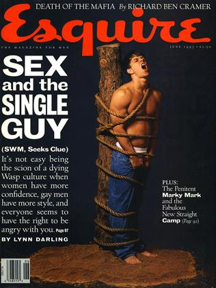 Cover for the June 1993 issue