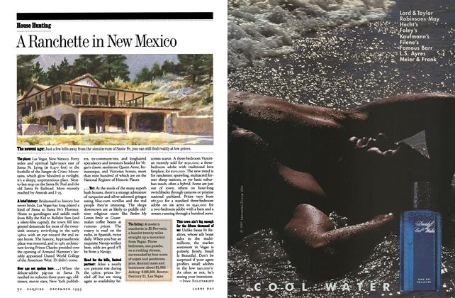 Article Preview: A Ranchette in New Mexico, December 1993 | Esquire