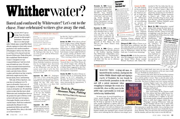 Article Preview: Whitherwater?, July 1994 | Esquire