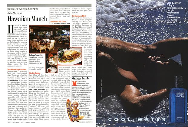 Article Preview: Hawaiian Munch, December 1994 | Esquire