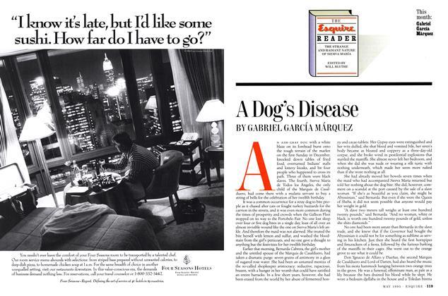 A Dog's Disease