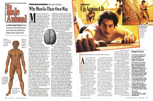Article Preview: Why Men Go Their Own Way, DECEMBER 1995 1995 | Esquire
