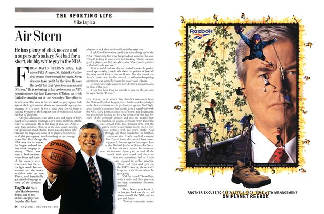 Article Preview: Air Stern, December 1995 | Esquire