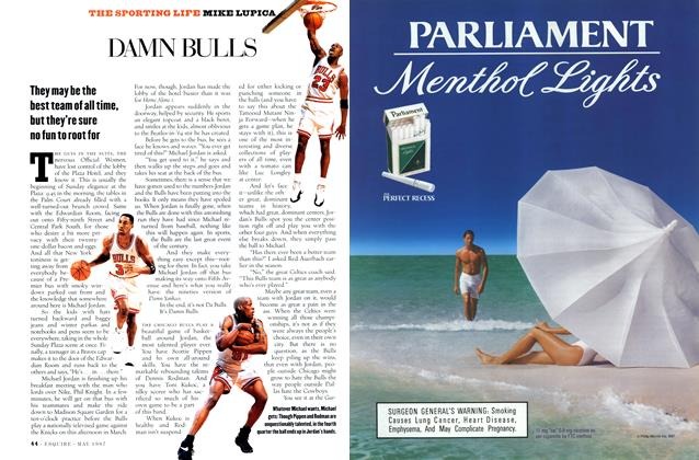 Article Preview: Damn Bulls, MAY 1997 1997 | Esquire