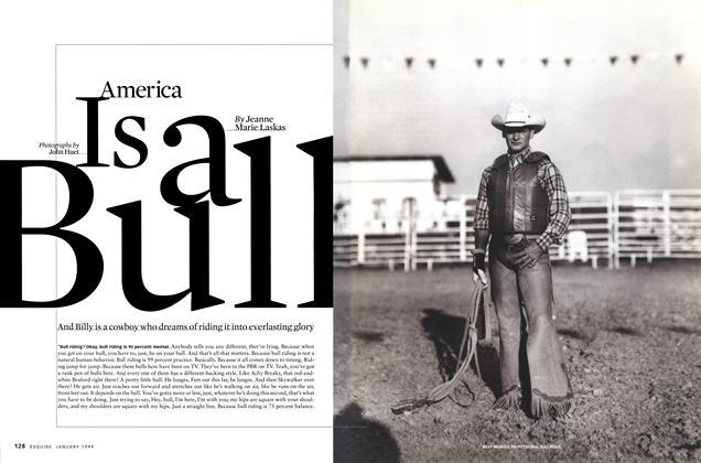 America Is a Bull