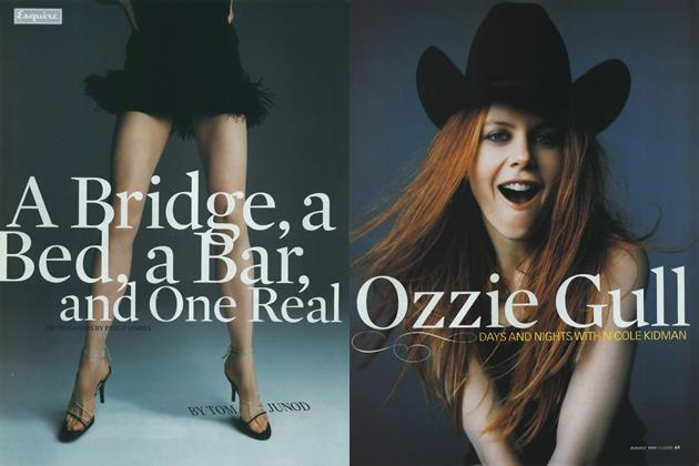 A Bridge, a Bed, a Bar, and One Real Ozzie Gull