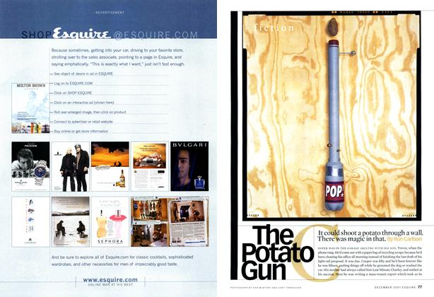 The Potato Gun