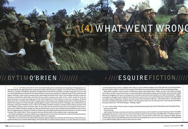 Article Preview: What Went Wrong, August 2002 | Esquire