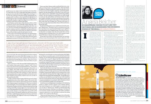 Article Preview: Putting Viruses to Work Angela Belcher, December 2005 | Esquire