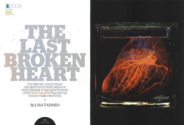 The Last Broken Heart