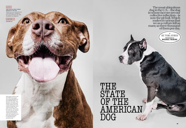 Article Preview: The State of the American Dog, August 2014 | Esquire