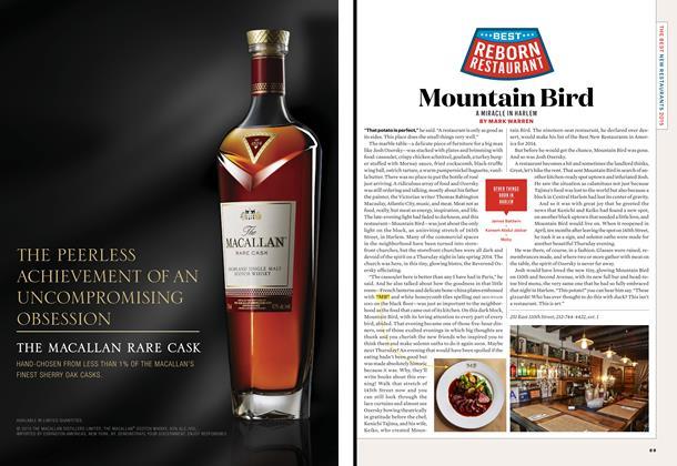 Article Preview: Mountain Bird, November 2015 | Esquire